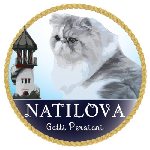 OF NATILOVA