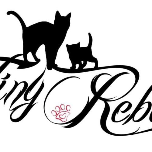 TINY REBELS