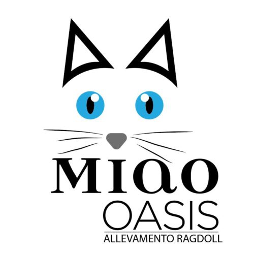 MIAO OASIS