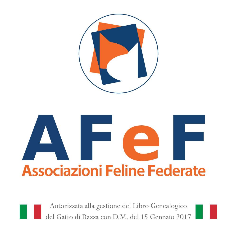 associazione gatti di razza pedigree autorizzati mipaaf associazione felina italiana allevatori cattery