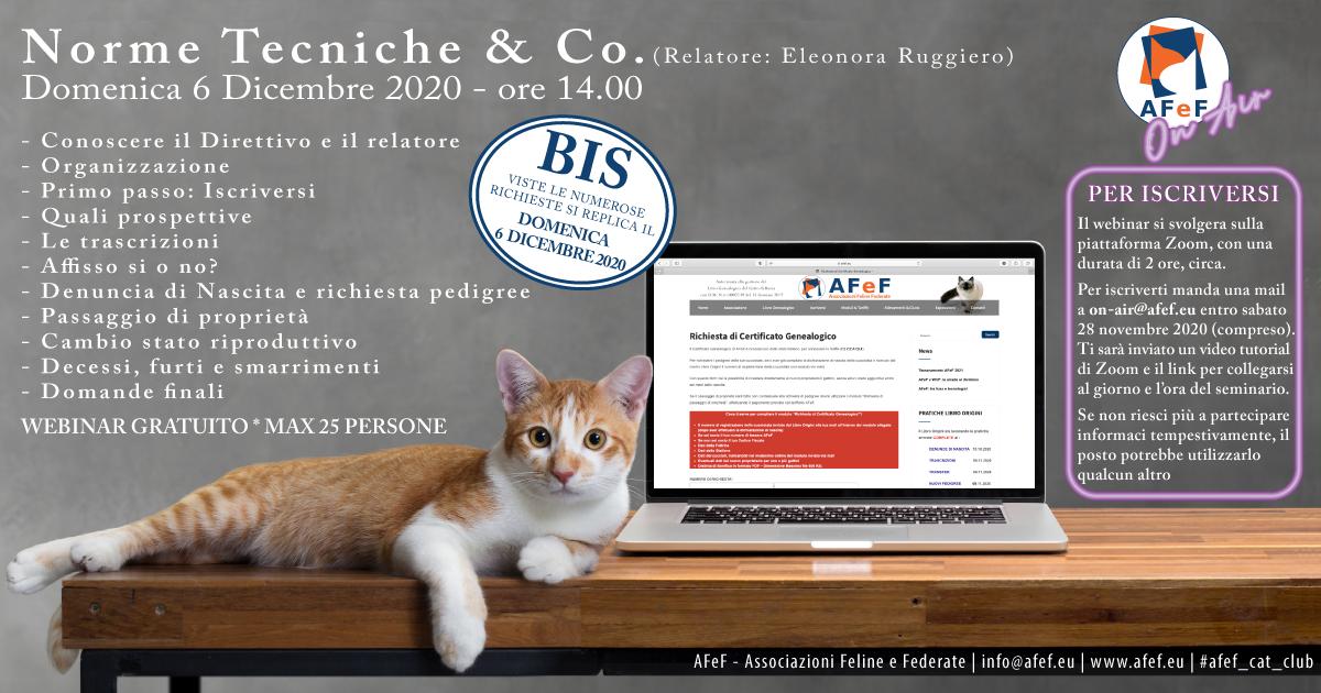webinar afef associazione gatti razza
