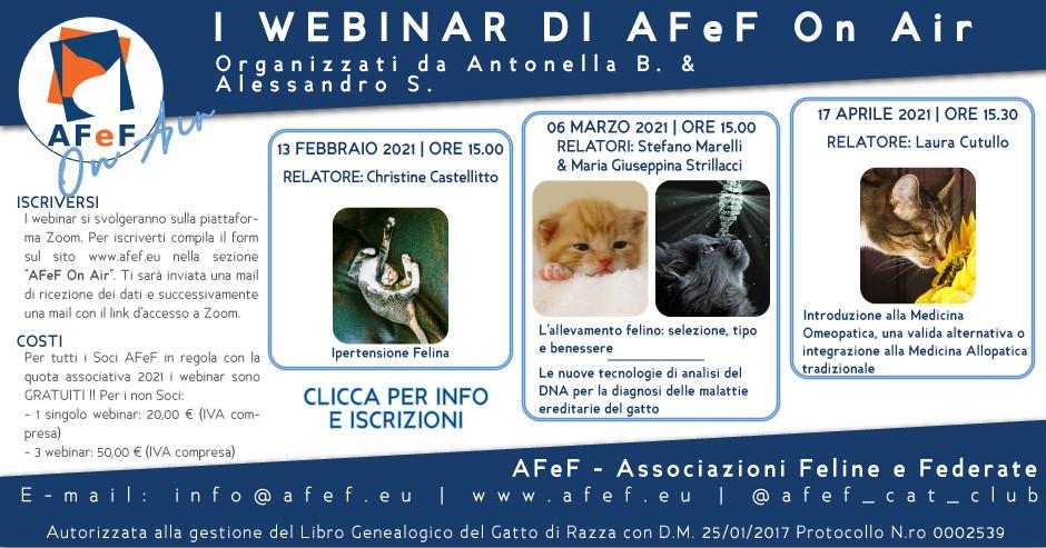 afef on air webinar cutullo strillacci castellitto marelli cultura felina ipertensione felina genetica omeopatia