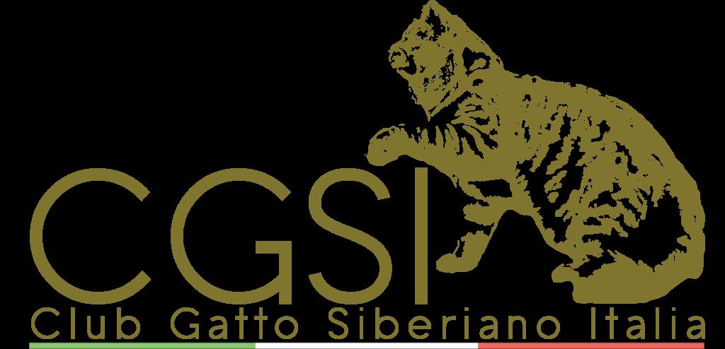 club gatto siberiano italiano