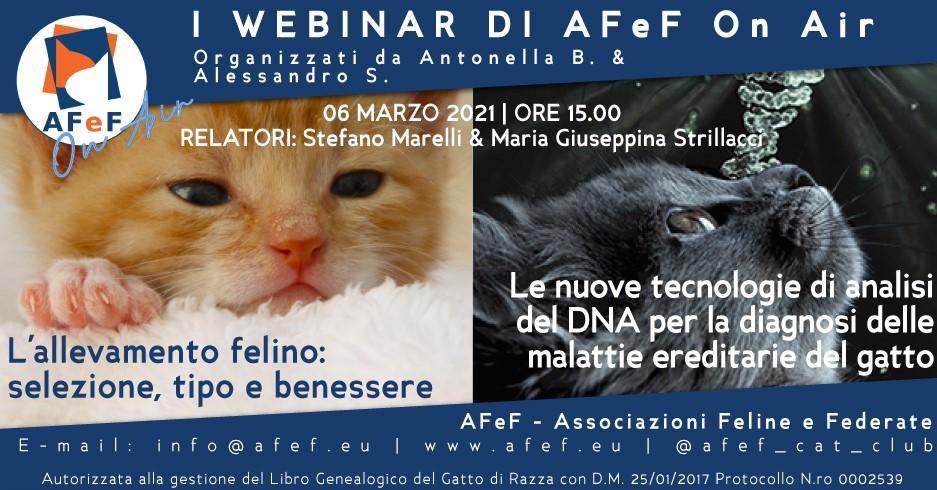 webinar afef associazione gatti razza marelli strillacci università milano